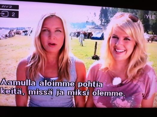 svensk sommar9